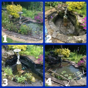 Pond Clean (2)