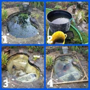 Pond Clean